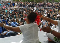 Canterbury Polyfest a highlight on the cultural festival calendar